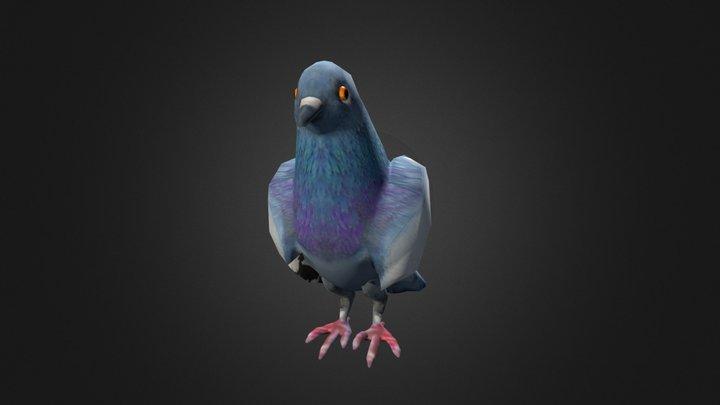 Pigeon 3 3D Model