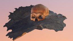 Sac Uayum Skull1 Simplified 3d Mesh 3D Model