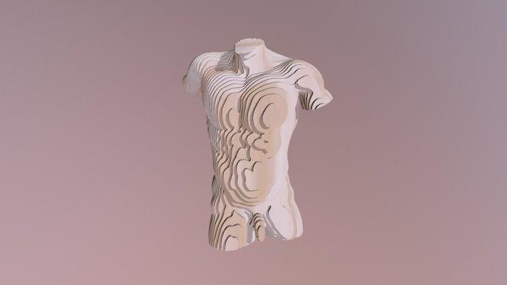 Male Torso pumped 3D Model