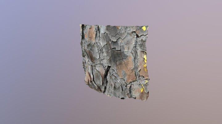 Longleaf pine bark 1300 3D Model