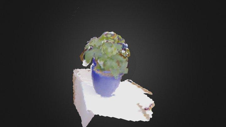 ascii_plant_be.ply 3D Model