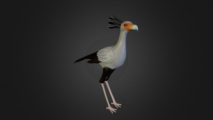 Secretary Bird 3D Model