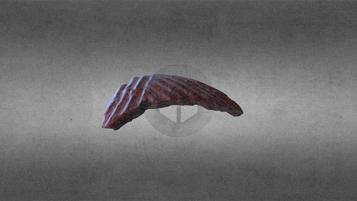 FRAMMENTO VASO PREISTORICO B 3D Model