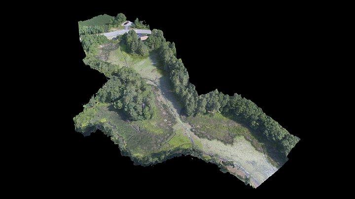 Beard's Creek Drawdown [2018-07-11] 3D Model