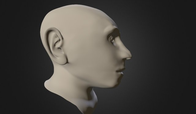 Neanderthal Face 3D Model