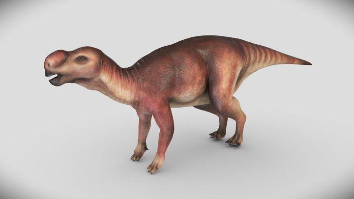 Muttaburrasaurus 3D Model