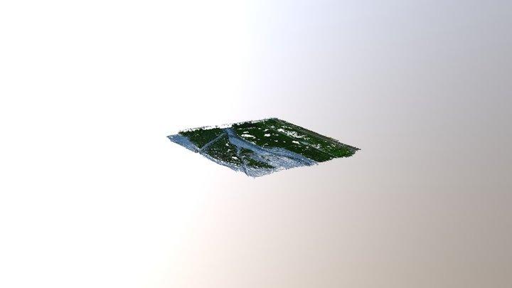 伐採前ドローン測量【常願寺川】02 3D Model
