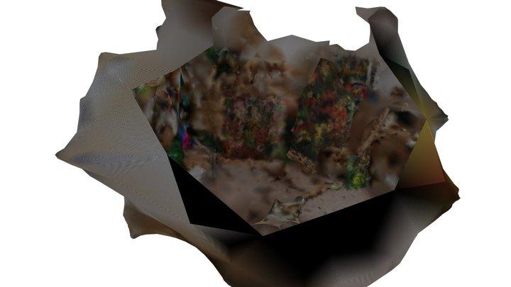Clairerccutpreview 3D Model