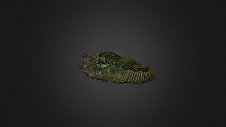 PatersonHouse 3D Model
