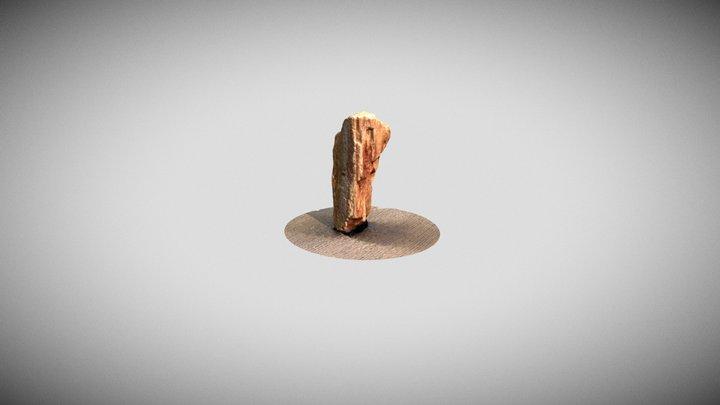 Petrified Wood photoscan 3D Model