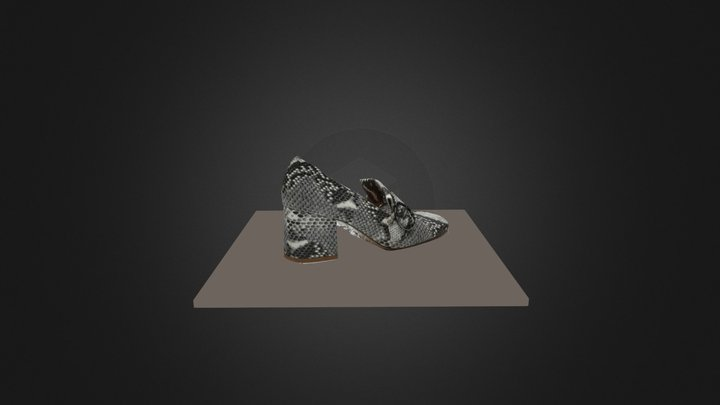 Agisoft Metashape Crocodile Shoe 3D Model