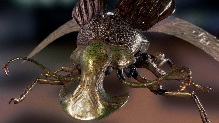 Boar Beetle realtime 3D Model