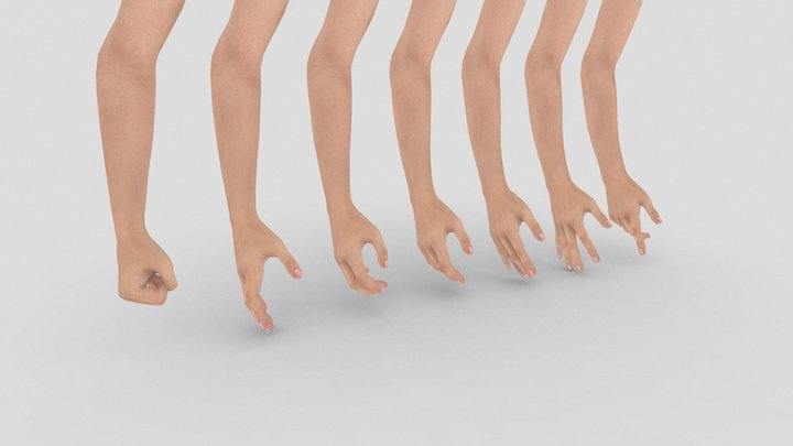 Hand Gesture Starter Kit - Female Hand and Arm 3D Model