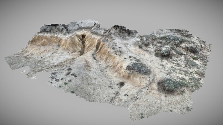 Scan of coastal soil erosion in California 3D Model