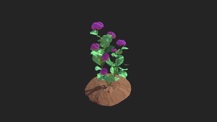 Hydrangea Contest - Entry by Xiszyy :3 3D Model