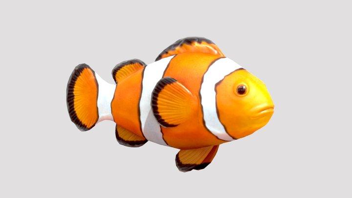 Clownfish 3D Model