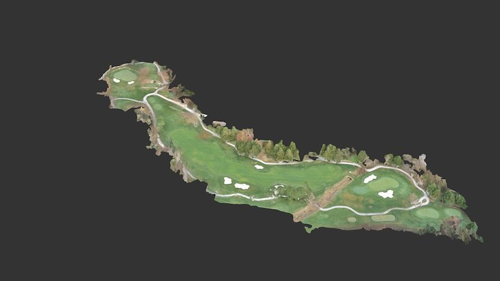 Ortho Golf 3d Mesh 3D Model
