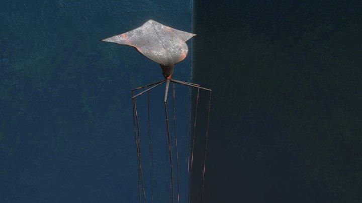Bigfin Squid 3D Model