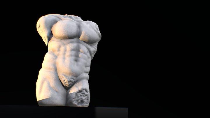 Male Torso - 3D Sculpt 3D Model