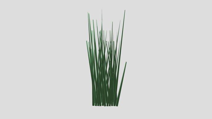 Mighty Grass 3D Model