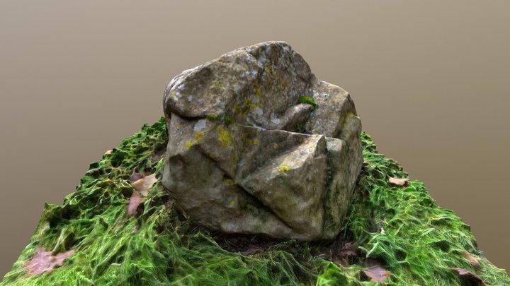 Rock_3/Kamień_3 3D Model