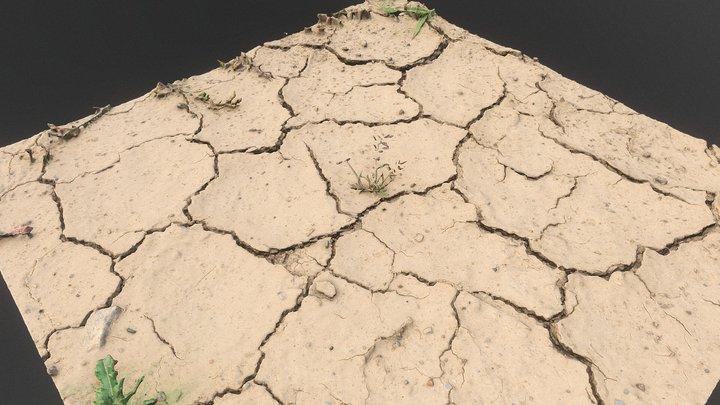 Drought dry soil desert puddle detail 3D Model