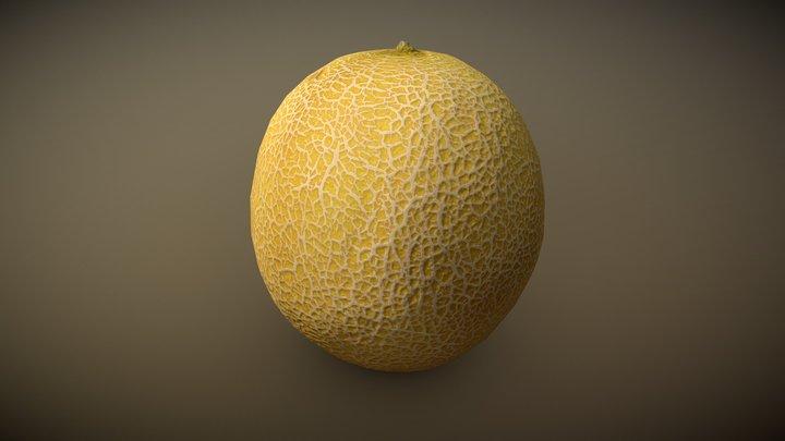 Galia Melon 3D Model