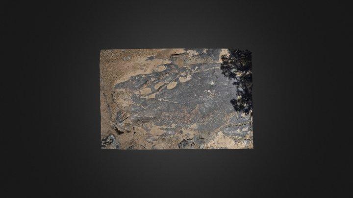 Flat-lying Petroglyph Panel (LA 90032)