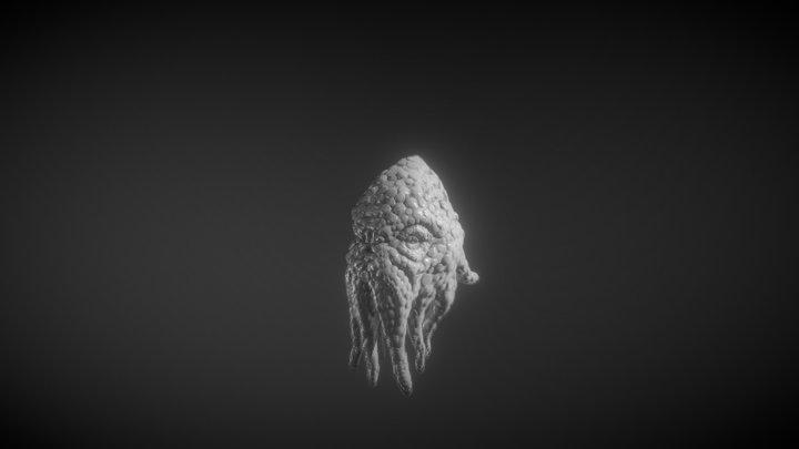 Old Squid 3D Model