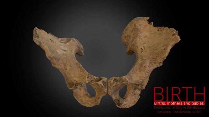 Grave 45b / pelvis 3D Model