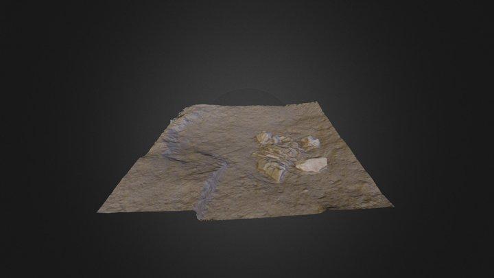 Sep low large 3D Model