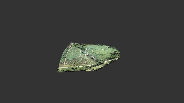 Ibiraçu_Terrain 3D Model