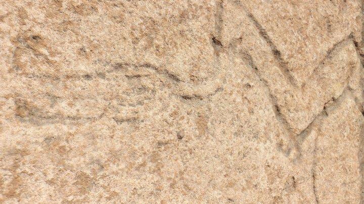 Arte rupestre - Figura Serpentiforme 3D Model