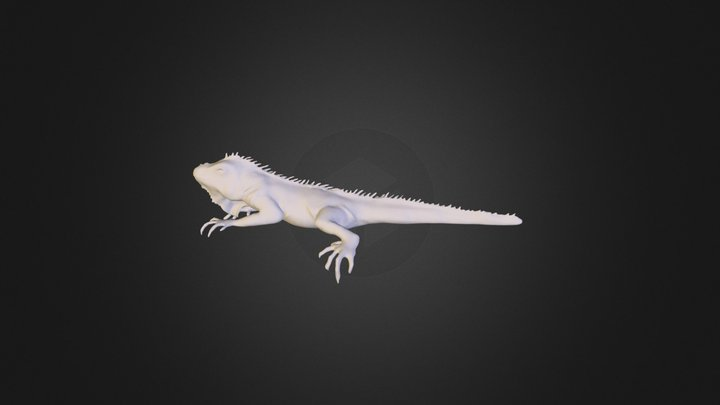 Igu Uv 3D Model