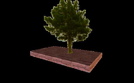 tree tests 3D Model