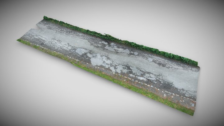 Road in the countryside 3D Model