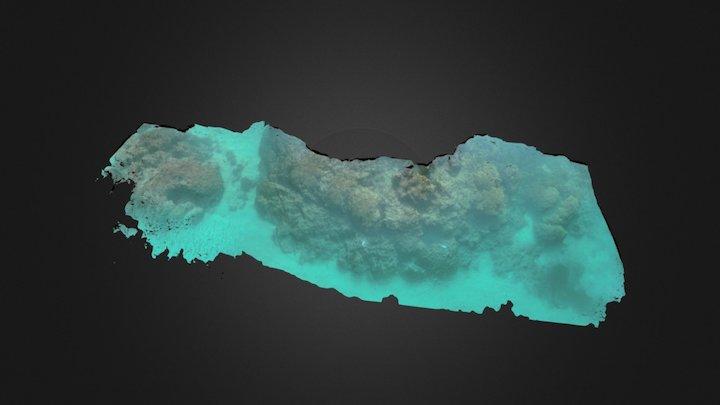 Lizard Island, Great Barrier Reef, Australia 3D Model