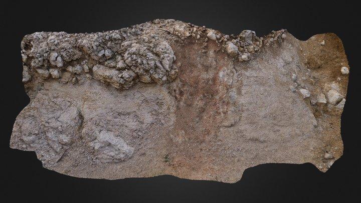 Limestone outcrop 5 3D Model