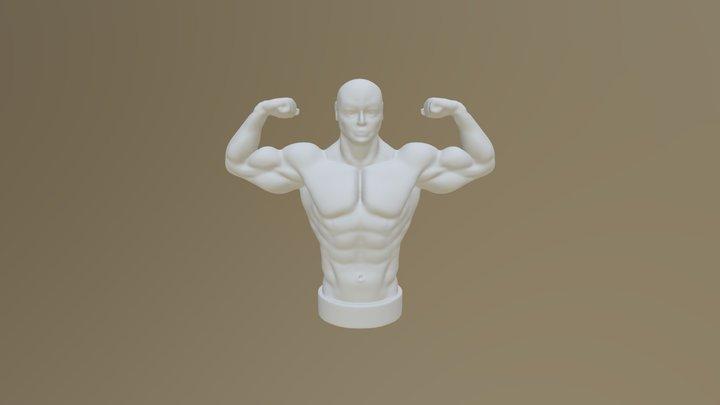Half 3D Model