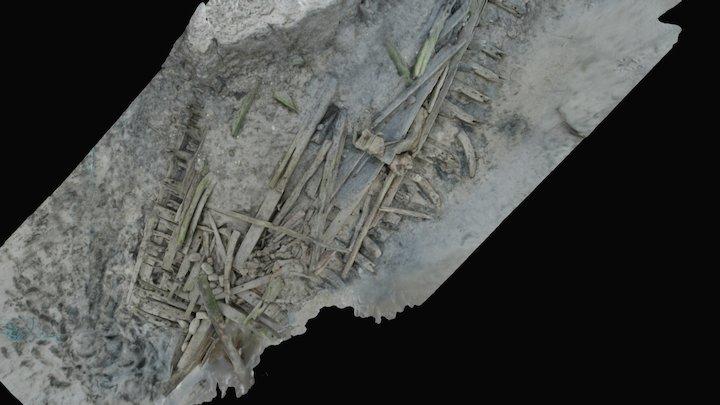 Ynyslas Wreck 3D Model