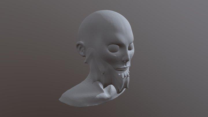 SculptJanuary Day 10: Beard 3D Model
