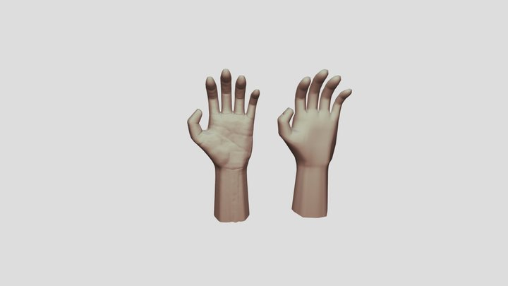 Hand Sculped details and lowpoly 3D Model