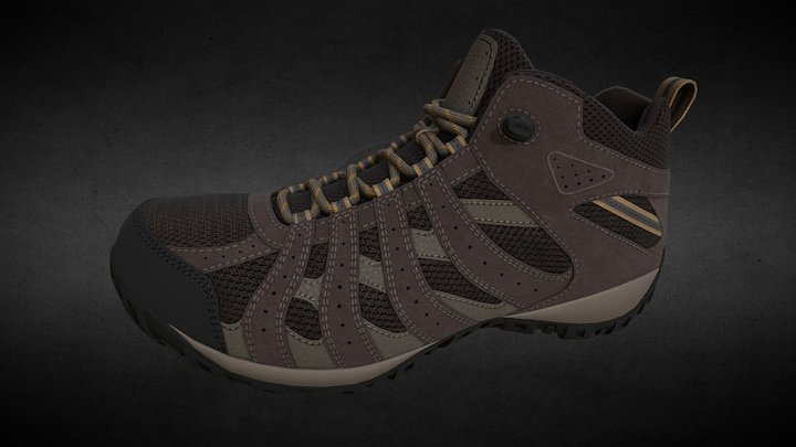 Hiking Shoe 3D Model