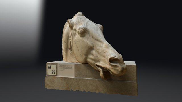 Parthenon Horse Head. British Museum 3D Model