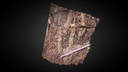 Geology - Burrows in the Hampshire Formation 3D Model