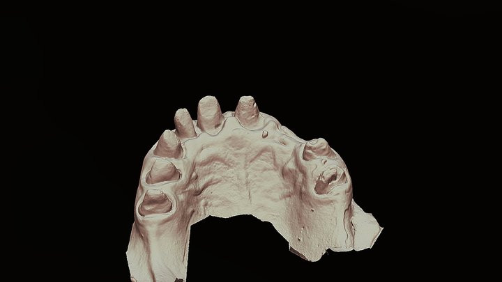 Пнина Салоним 3D Model