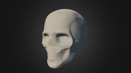 Skull simplification 4 3D Model