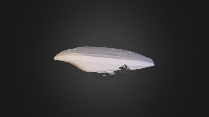jed23 3D Model