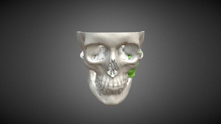 Test8 3D Model