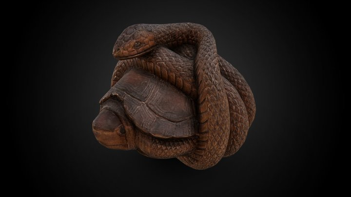 Netsuke - Snake curled around a turtle 3D Model